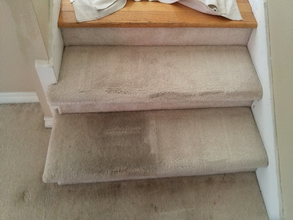 Green Carpet Cleaning In San Diego San Diego Green