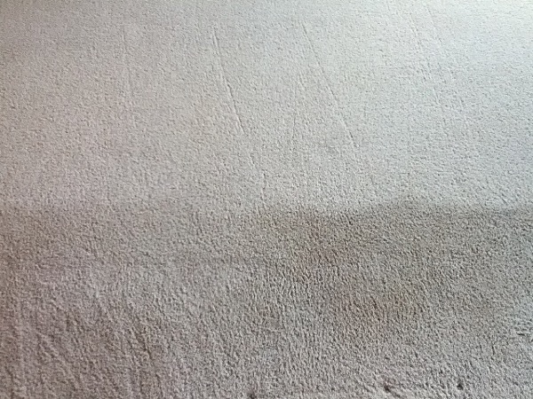 Green Carpet Cleaning San Diego San Diego Green Carpet